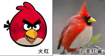 红色小鸟简笔画